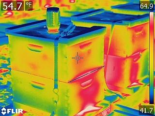 High Resolution Infrared Image of Beehives